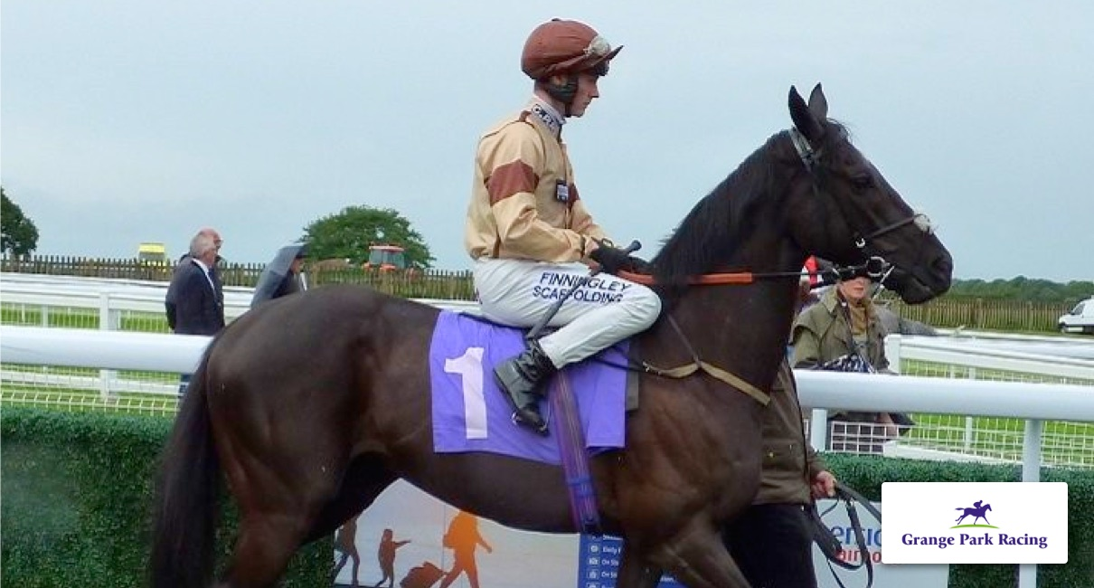 Racehorse share