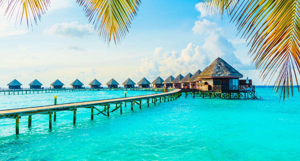 Maldives tb New