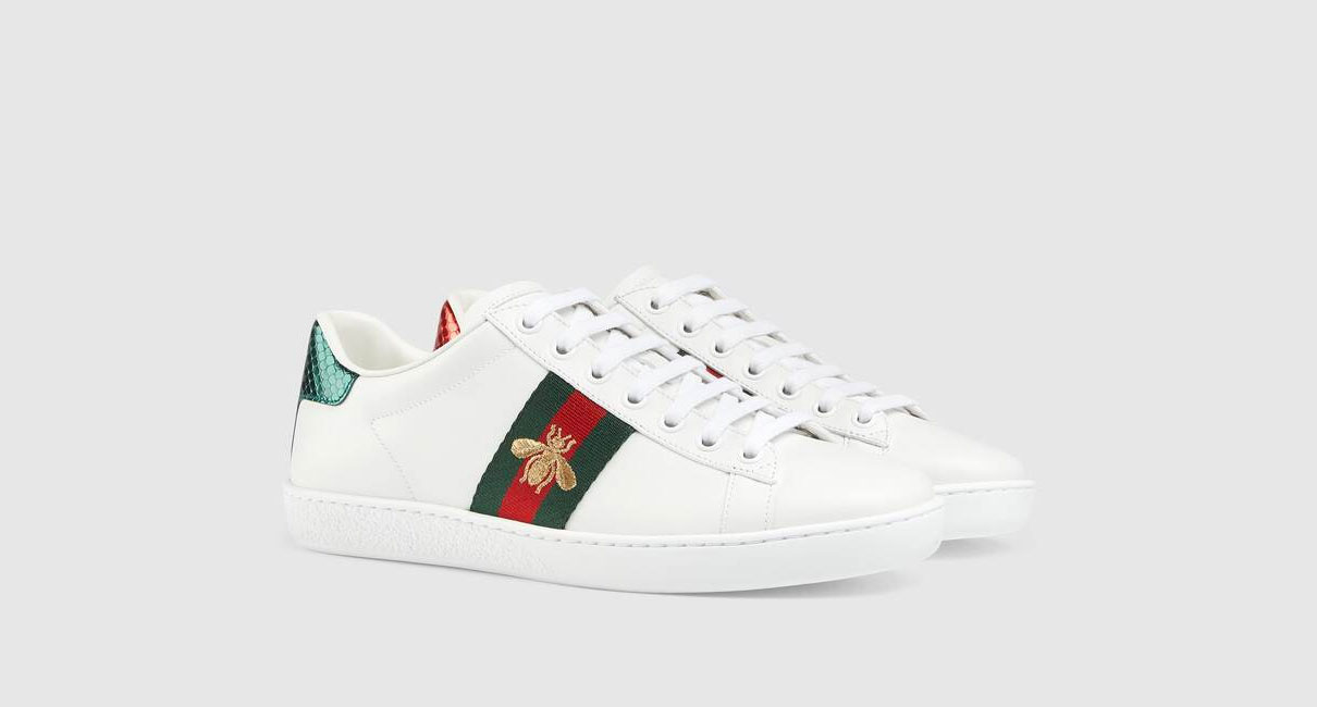 Gucci trainers on blank background